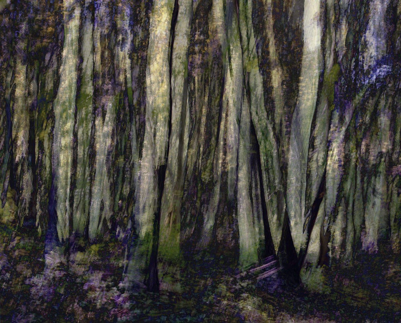 Comme un arbre, Jean-Luc Tartarin